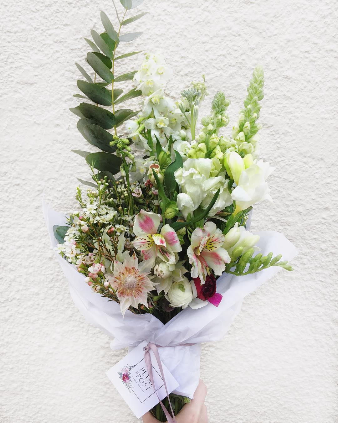 Today's dreamy Posy is alstroemerias with delphiniums, snapdragons,blushing bride, stocks, freesia, wax and penny gum 🌿Order before 12:30pm for delivery this afternoon.
