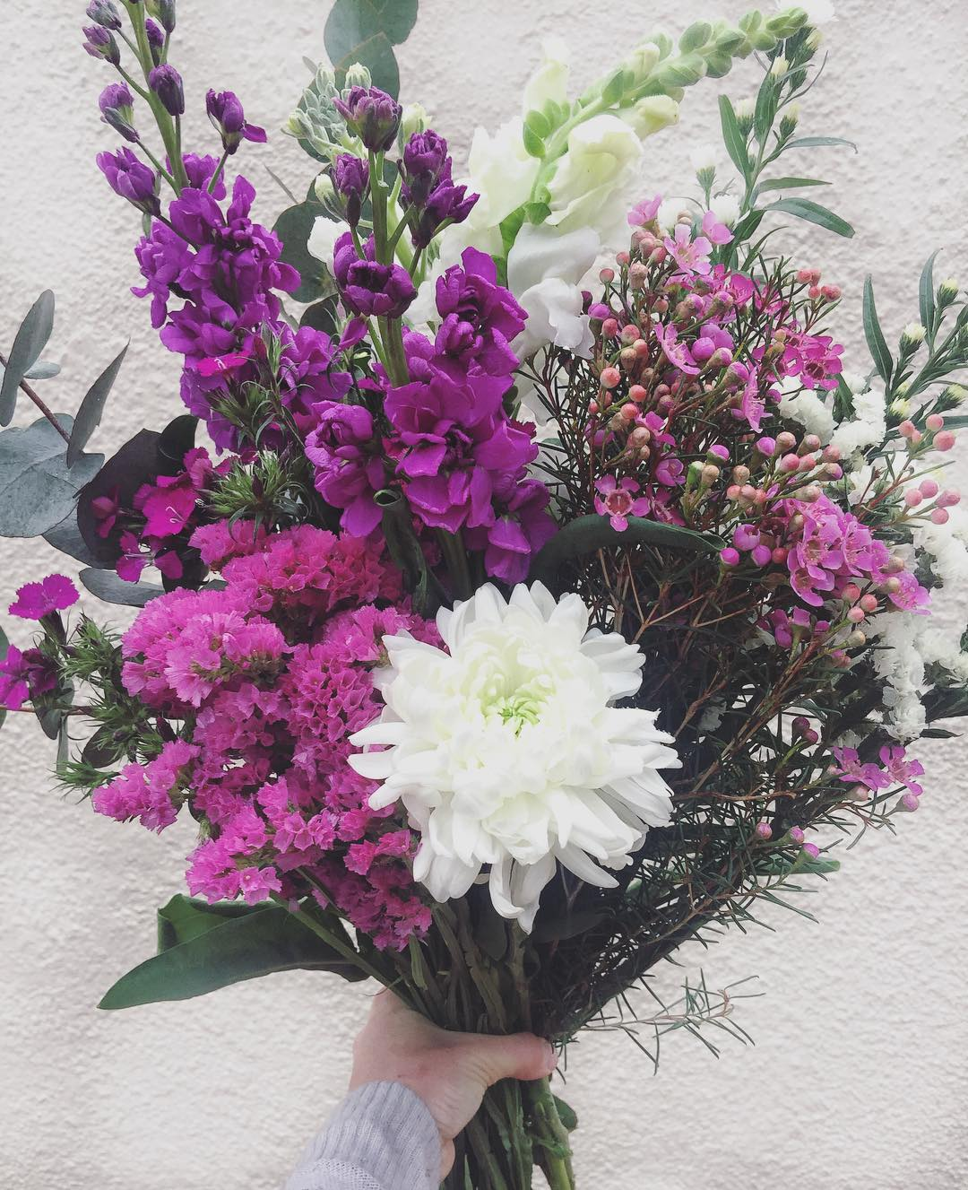 Straight from the flower fields ? Today's Posy is gorgeous violet and white stocks, with sweet william, puffy Snowdens, statice, with wax and penny gum. Order before 12:30pm for delivery this afternoon. R225 single / R450 double.